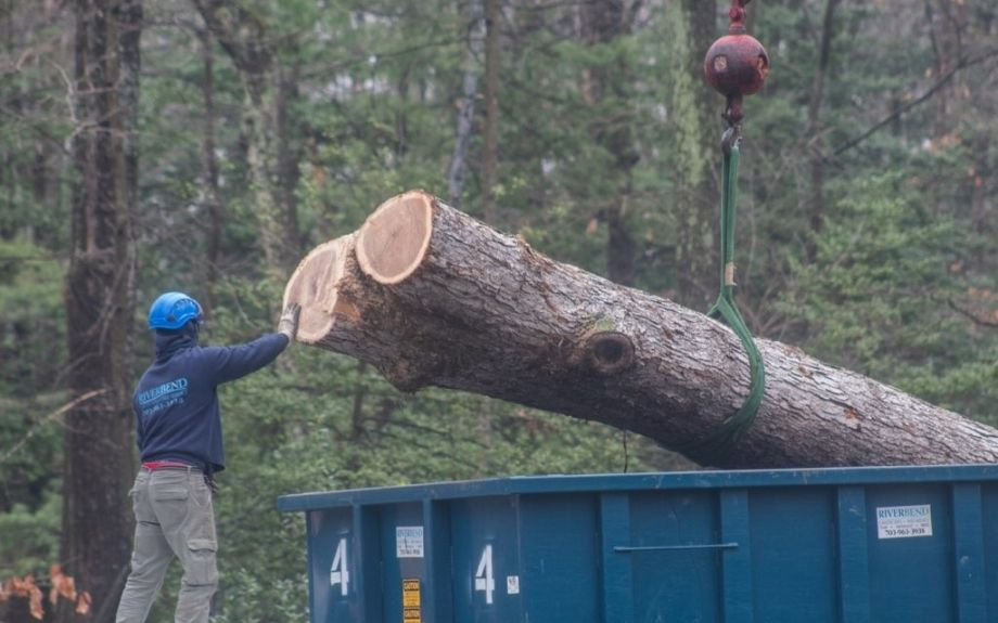 A member or the Riverbend Landscapes and Tree Service ground crew guides a large section of a tree that is being moved by a crane.