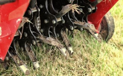 A mechanical lawn aerator removes pieces of lawn to allow oxygen and nutrients into the soil.